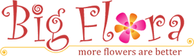 Big Flora Online Flower Delivery