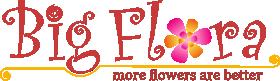Big Flora Online Flower Delivery
